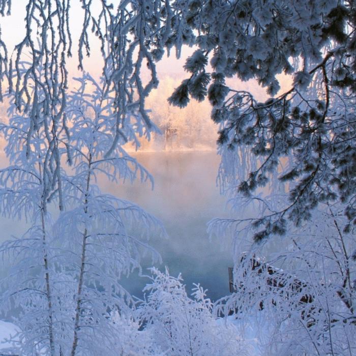 люблю красивая живая картинка зимнего утра занавески для